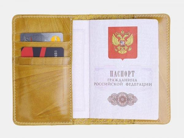 Неповторимая обложка для паспорта ATS-3803