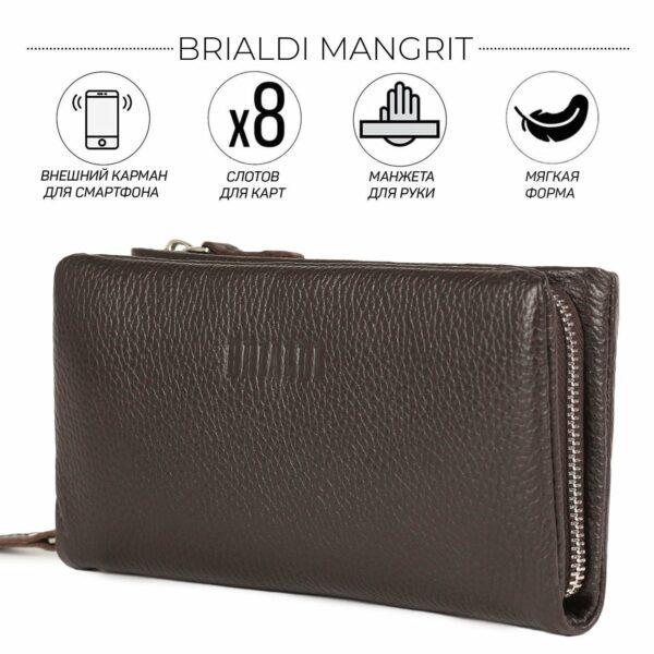 Стильный коричневый мужской портмоне клатч BRL-44380