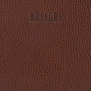 Стильная темно-оранжевая мужская кожгалантерея BRL-28406 235697