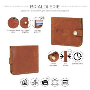 Удобный темно-оранжевый мужской бумажник BRL-7593 233768