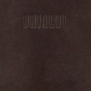 Неповторимая коричневая дорожная сумка для командировок BRL-7402 233733